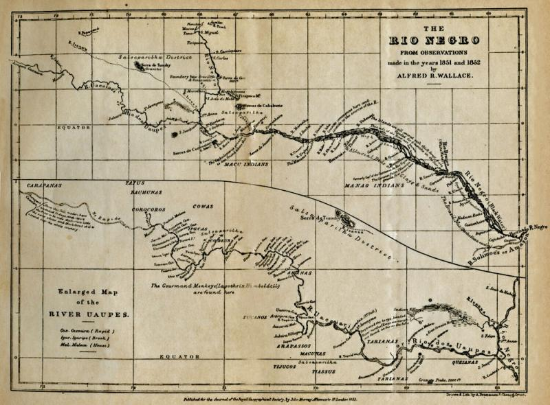 Wallace's map of the Rio Negro river in Brazil published in 1853. Copyright George Beccaloni