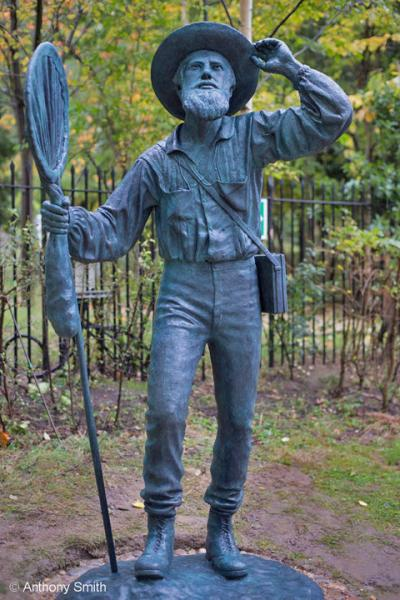 Statue of Alfred Russel Wallace. Copyright Anthony Smith